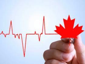 专家分享加拿大基金投资经验:推荐四大热门非股市基金